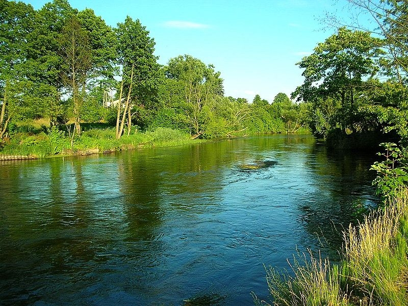 Spływy kajakowe Brdą