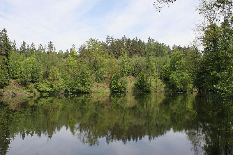Spływy kajakowe Łyną